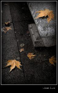 Pasa la vida... Imagen de José Luis en Flickr.